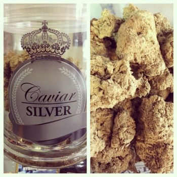 Caviar Silver - Coated Flowers - Caviar Gold